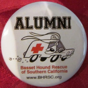 bhrsc-alumni-badge