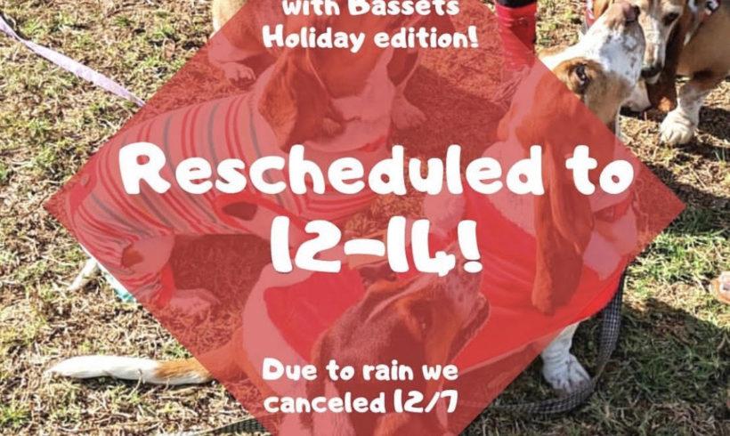 Holiday Brunch with Bassets & Adoption Reunion rescheduled!