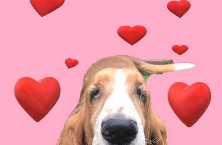Get your Virtual Valentine today!!